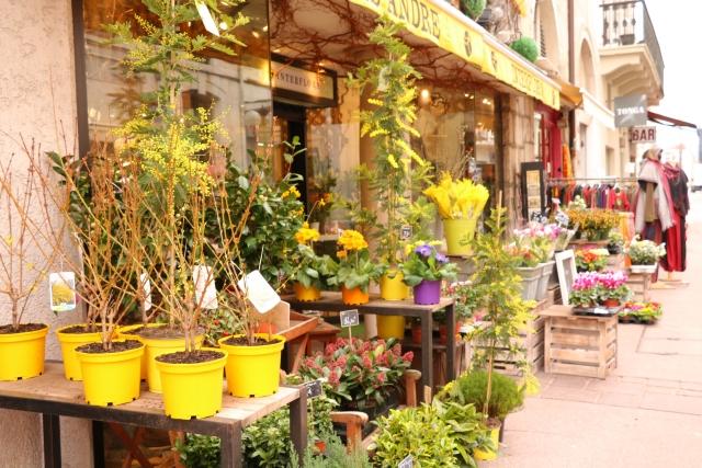 個人事業として花屋で独立する際に開業資金を抑える方法