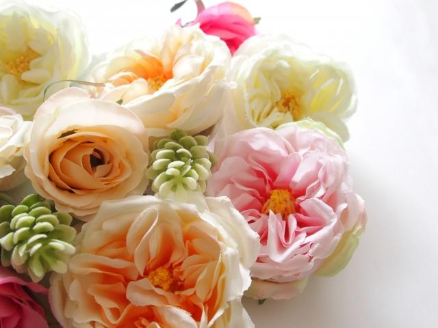 花のプレゼントでお祝いしよう!お祝いにぴったりの花の選び方