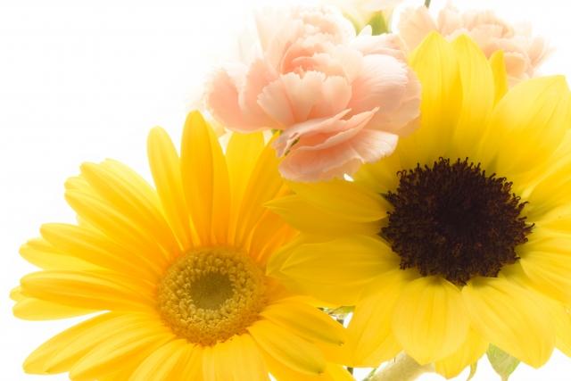 父の日に贈りたいフラワーギフト!おすすめの花束の選び方