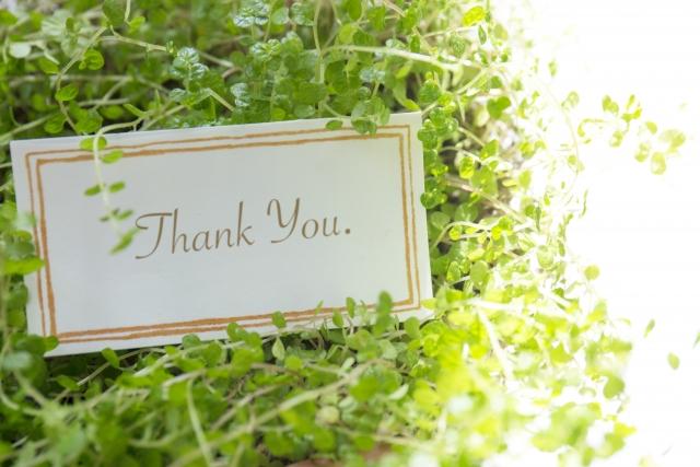父の日に贈りたい観葉植物の魅力とは?選び方のポイント
