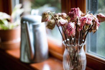 花束をインテリアとしておしゃれに長い間楽しみたい!花束を長持ちさせるお手入れの方法は?