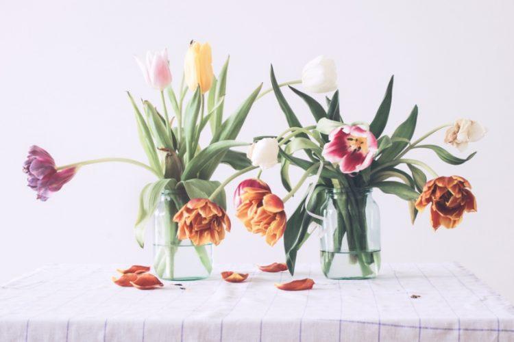 その花まだ捨てないで!しおれた花の復活方法をチェック