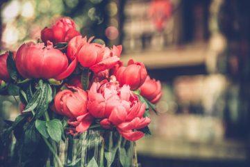 記念日にお祝いの花を贈るときのマナーとは?知っておきたいポイントをシーン別にご紹介