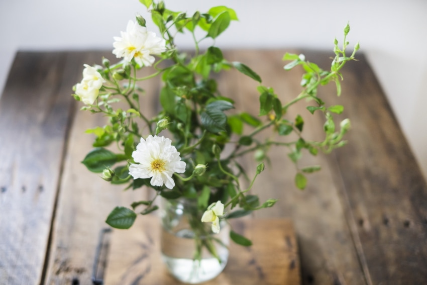 花を生けるコツ
