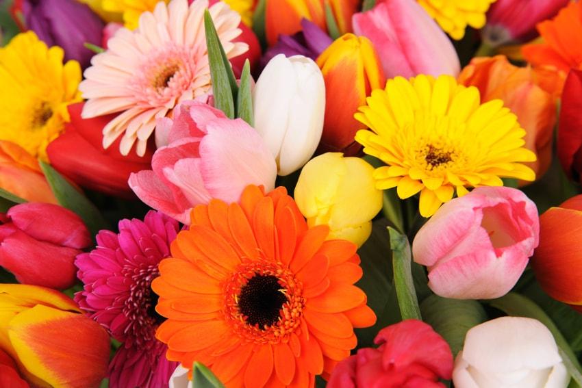 花束でカラーコーディネートをしよう