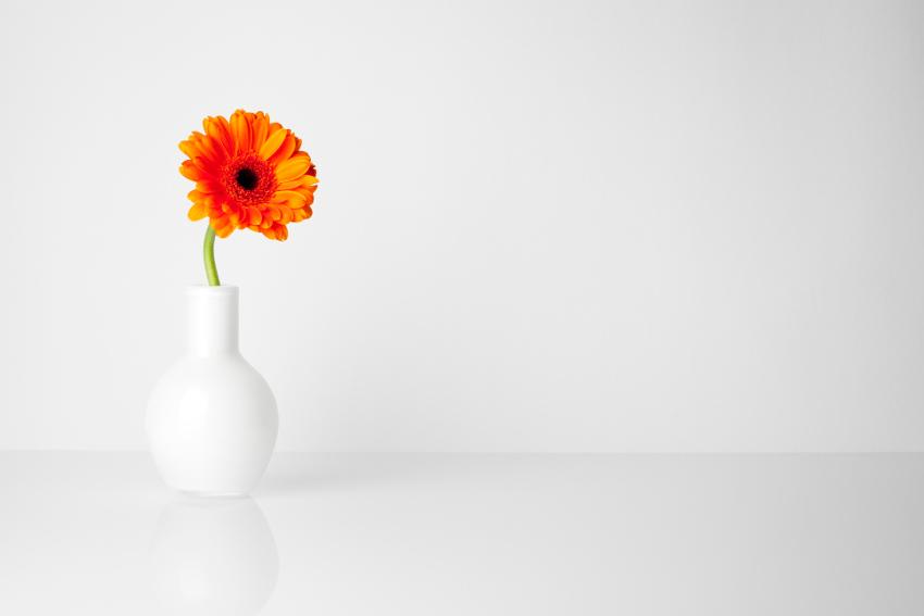 一輪の花から飾ってみよう