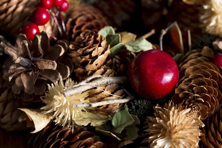 クリスマスらしい植物を使ったもの