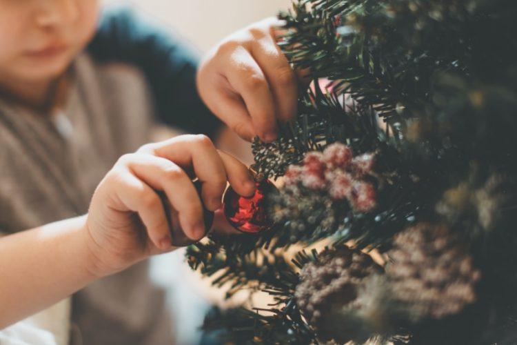 クリスマスには観葉植物が大活躍!上手に楽しむコツとは