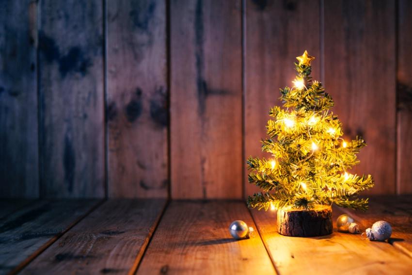 モミの木で作るクリスマスツリー