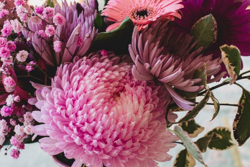 秋生まれの人に贈りたい花
