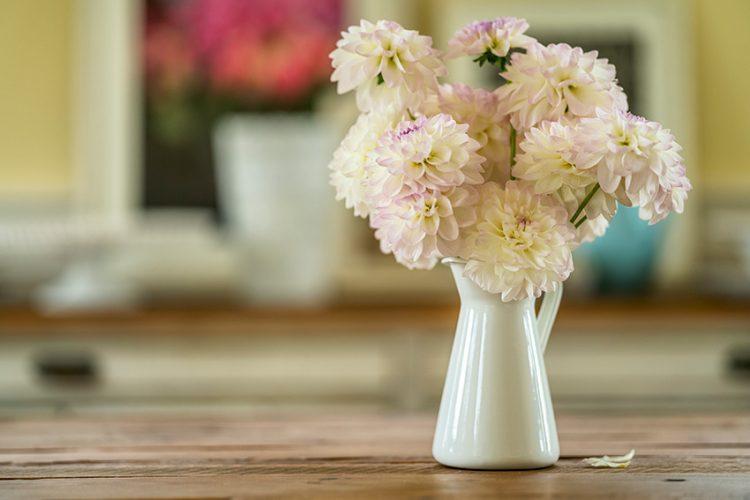 「花のある暮らし」を楽しむために。知っておきたい花瓶の選び方・楽しみ方。