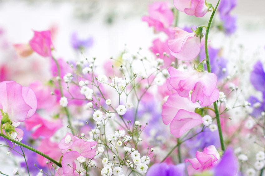 誕生日らしい!季節感のある花束