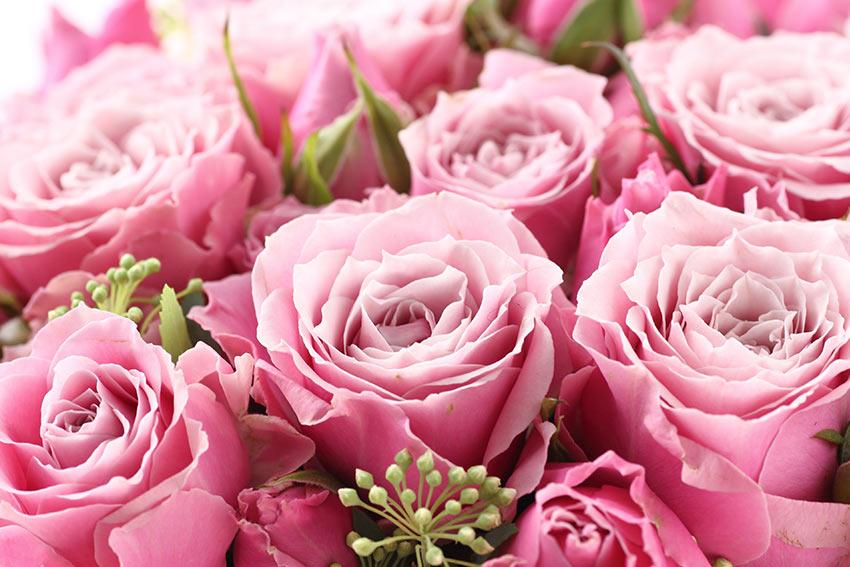 愛情が伝わる!バラの花束