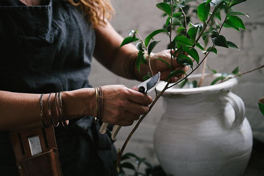 葉の処理や花瓶の洗浄
