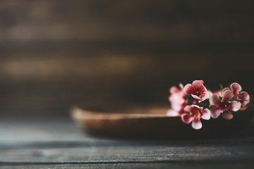 生花の正しい生け方とは?花を生ける上での大切な基本を紹介