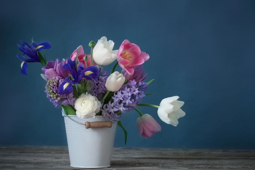 花の水揚げ