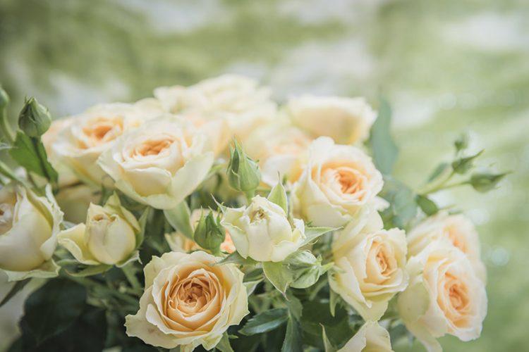 彼氏に花をプレゼントしよう!記念日には花言葉と共に気持ちを伝えて
