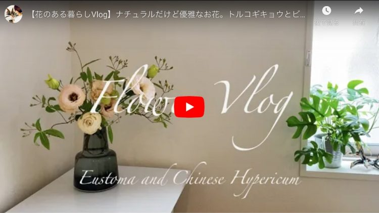 【花のある暮らしVlog】ナチュラルだけど優雅なお花。トルコギキョウとビオウヤナギ。