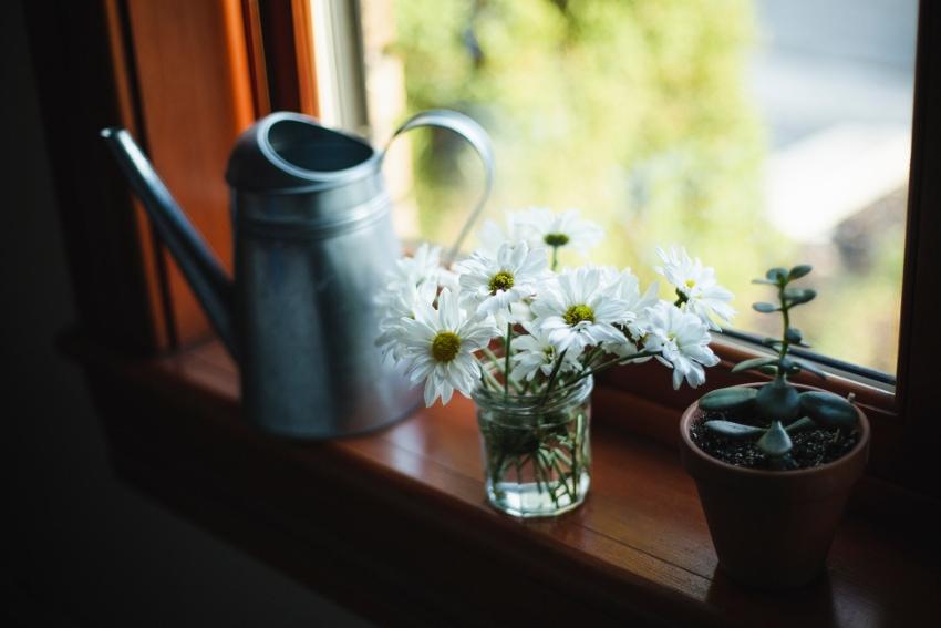 花を飾ることに慣れていない人に贈る場合