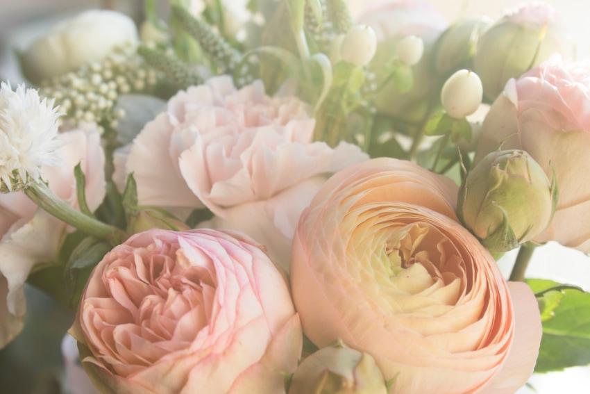花を長持ちさせるために必要な栄養剤