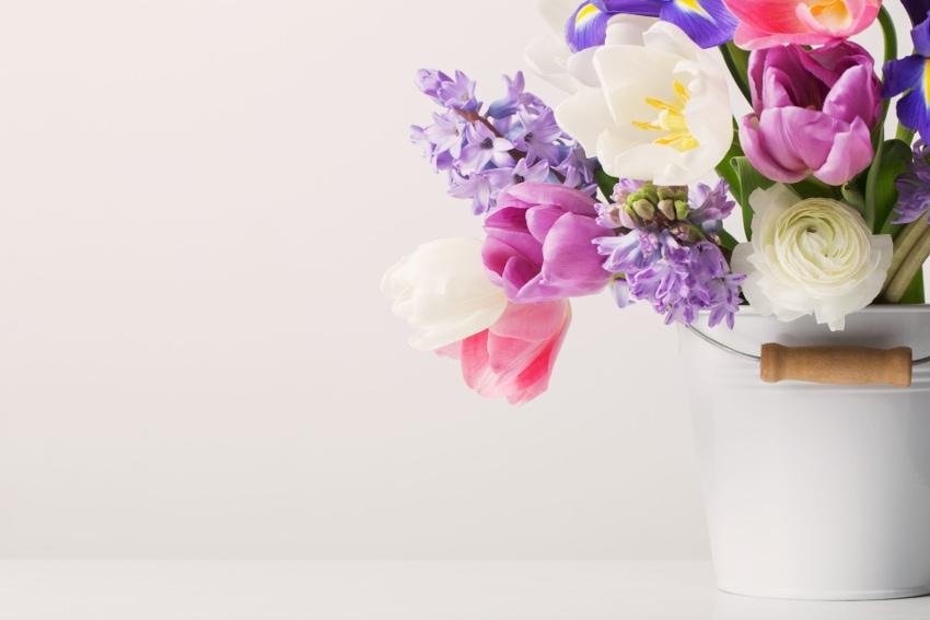 切り花の水揚げ方法