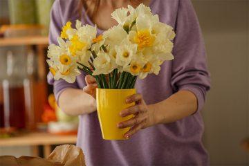 花のケアを大切に。それぞれの花に適した水揚げ方法をご紹介