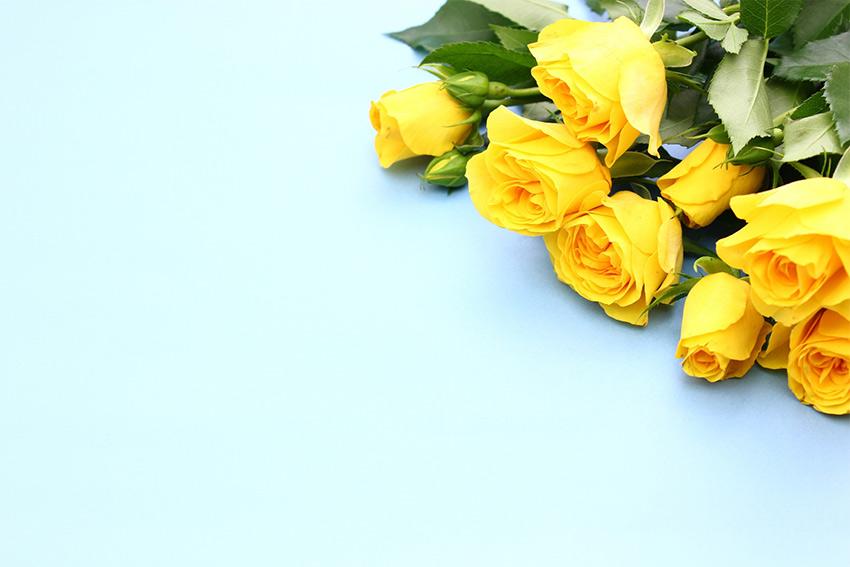 父の日のイメージカラー!黄色い花