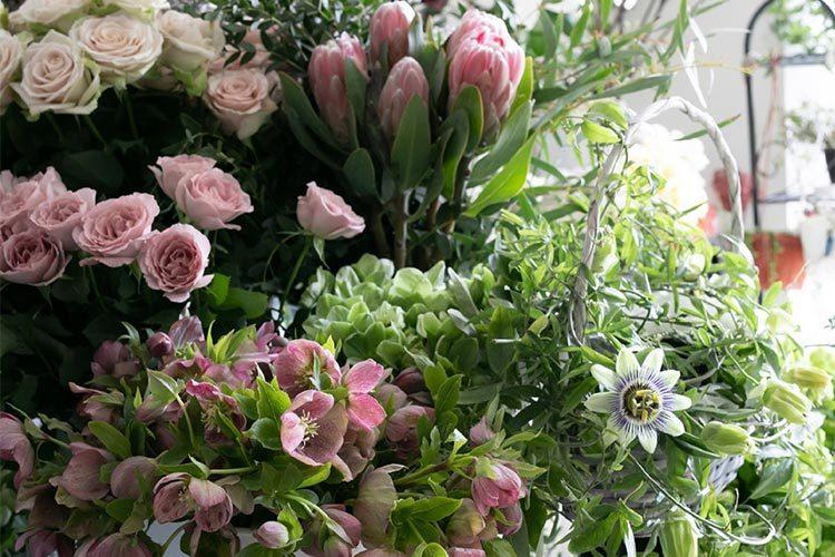 bloom & grow Flowers