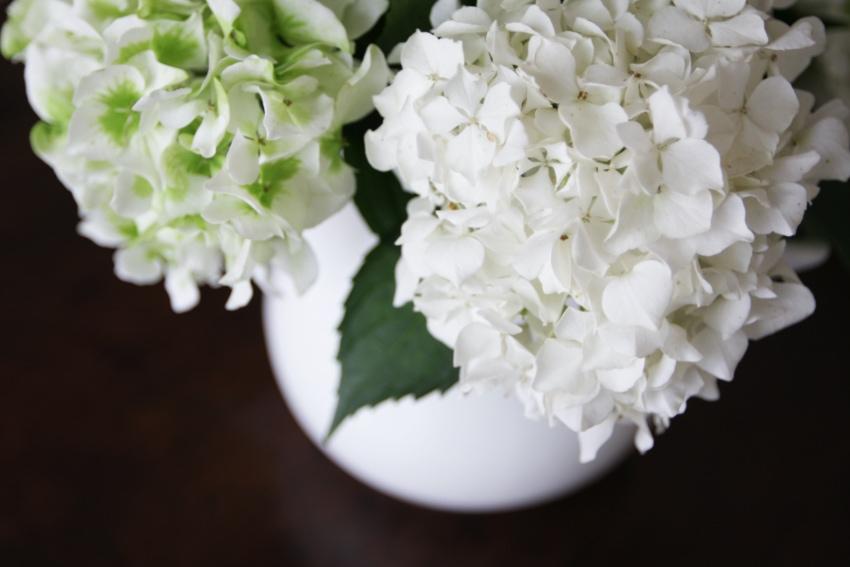 季節の花を楽しむことができる