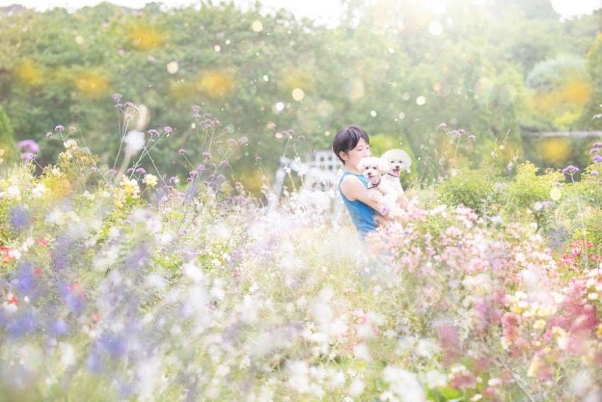 ワンちゃんと過ごす愛しい日々に、お花で彩を添えたい<br> – dog&flower 杏こま(東京都江東区)