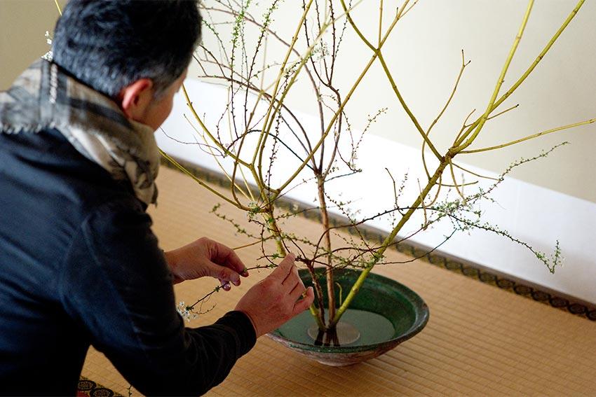 日本の伝統を学ぶ生け花