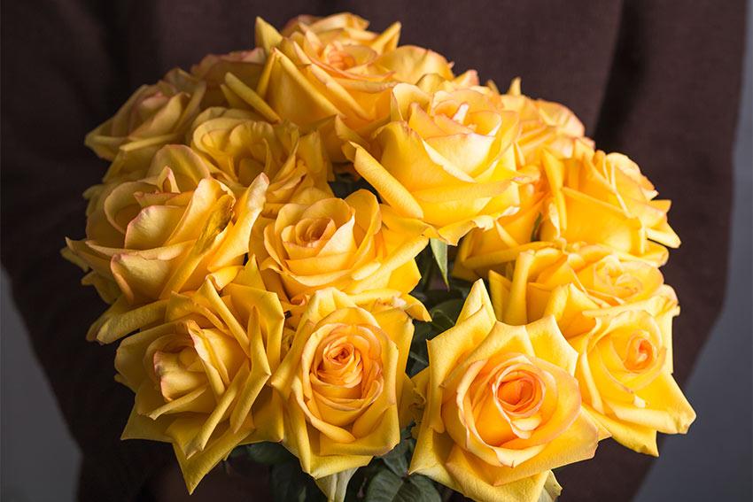 父の日のテーマカラーの花を選ぶ